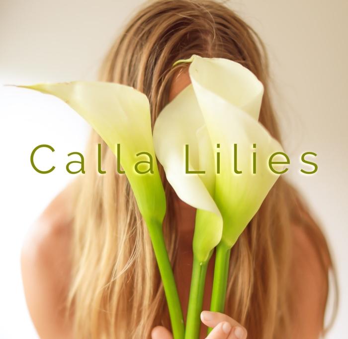 Calla Lilies (2)